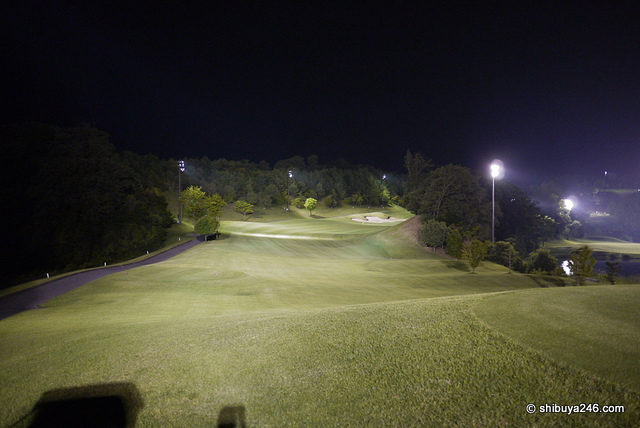 Night golf in Japan (Courtesy: shibuya246)