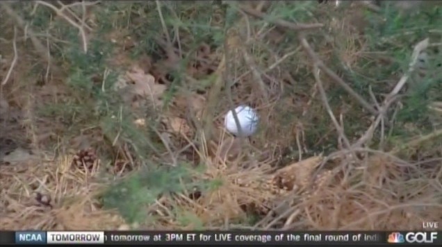 Not the best place for a ball, Shane Lowry.