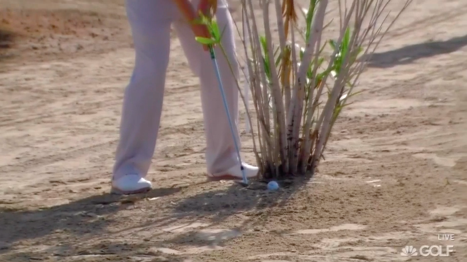 Branden Grace's ball meets a shrub.