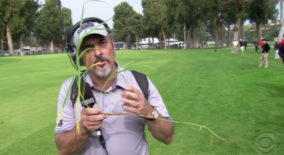 02.21.15 feherty grass