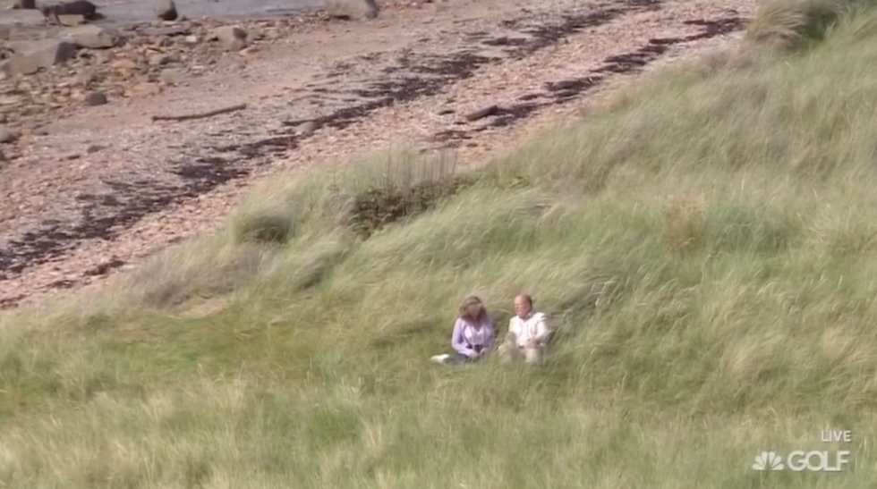 Just sitting in the fescue.