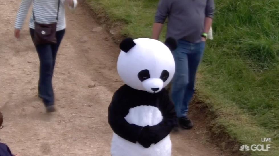 Scottish Panda.